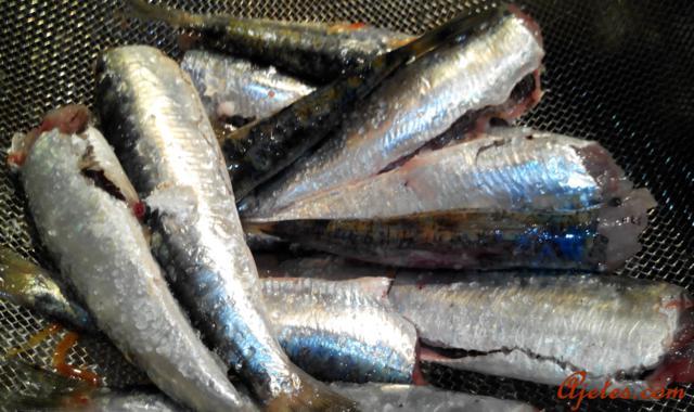 sardinas al horno